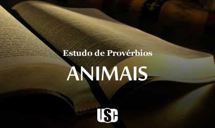 Textos de Provérbios sobre Animais