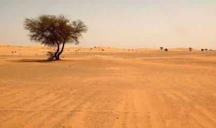 As provações existem para nos transformar – O propósito do deserto